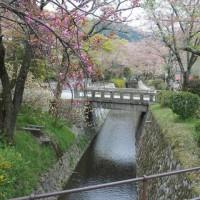 14.04.2014  Kyoto - Japan